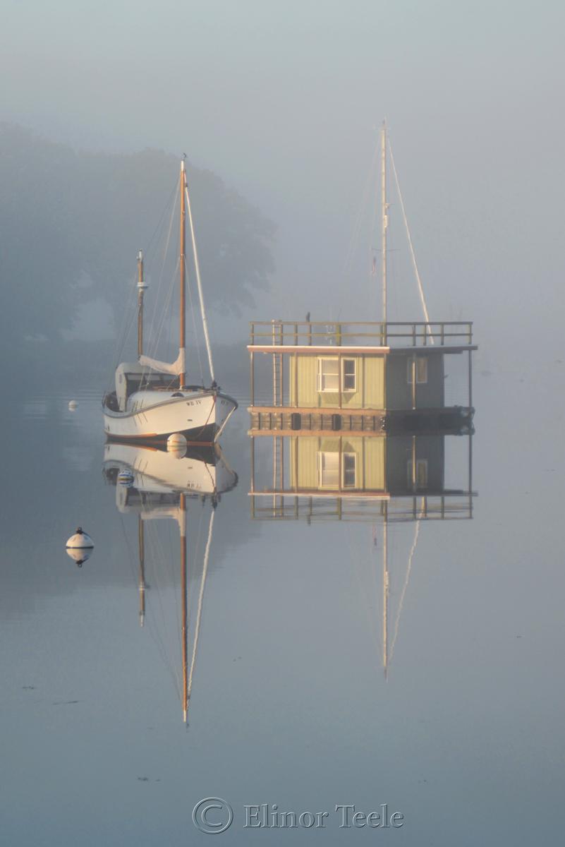 Fog on the Harbor 3