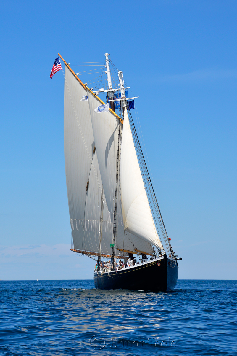 Adventure, Sail Boston 2