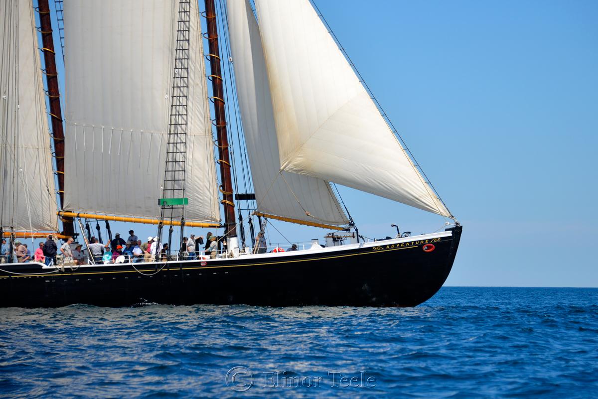 Adventure, Sail Boston 3