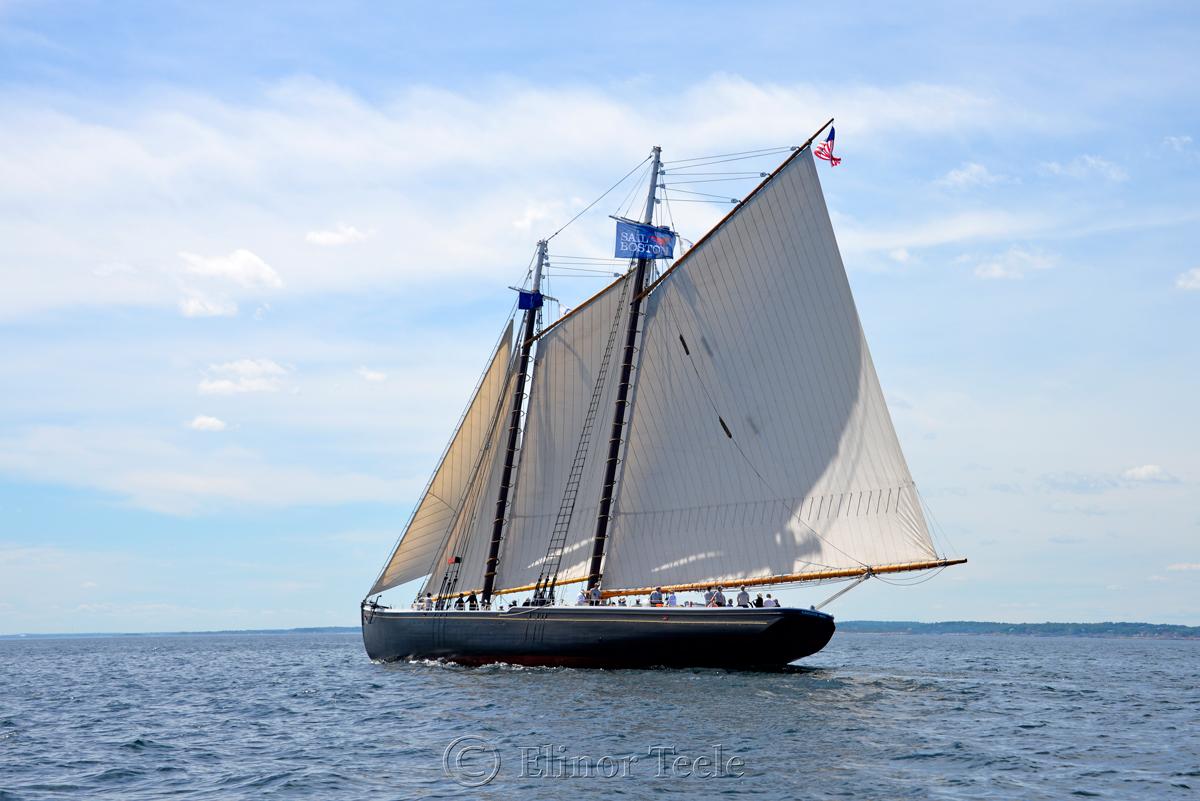 Adventure, Sail Boston 5