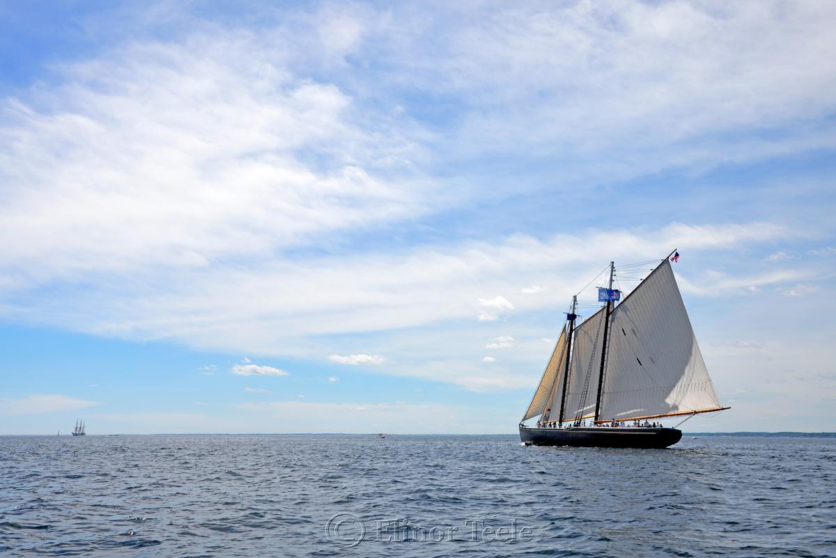 Adventure, Sail Boston 6