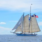 Spirit of South Carolina, Sail Boston 1