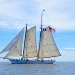 Spirit of South Carolina, Sail Boston 2