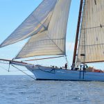Spirit of South Carolina, Sail Boston 3