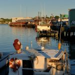 Harbor Cove in July, Gloucester MA