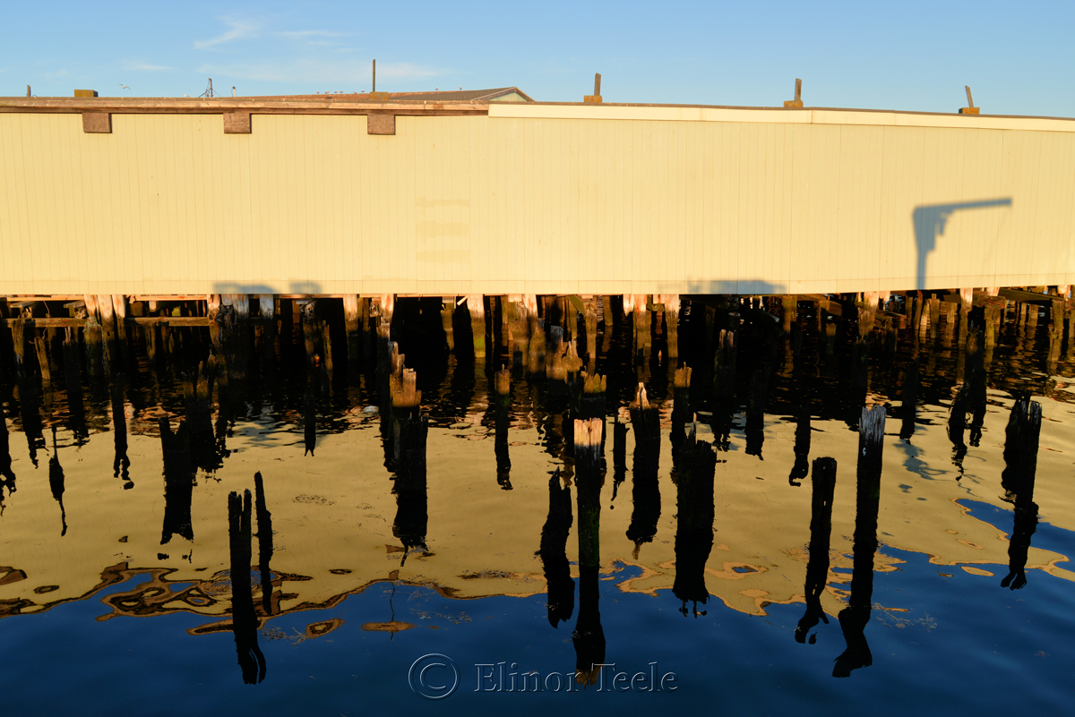 Wharf Reflections, Gloucester MA