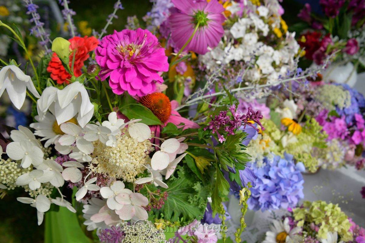 Flower Table, Sea Fair 1
