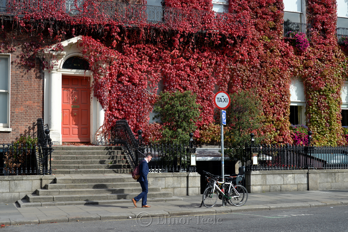 Around St. Stephen's Green, Dublin