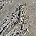 Sand Swirls 1