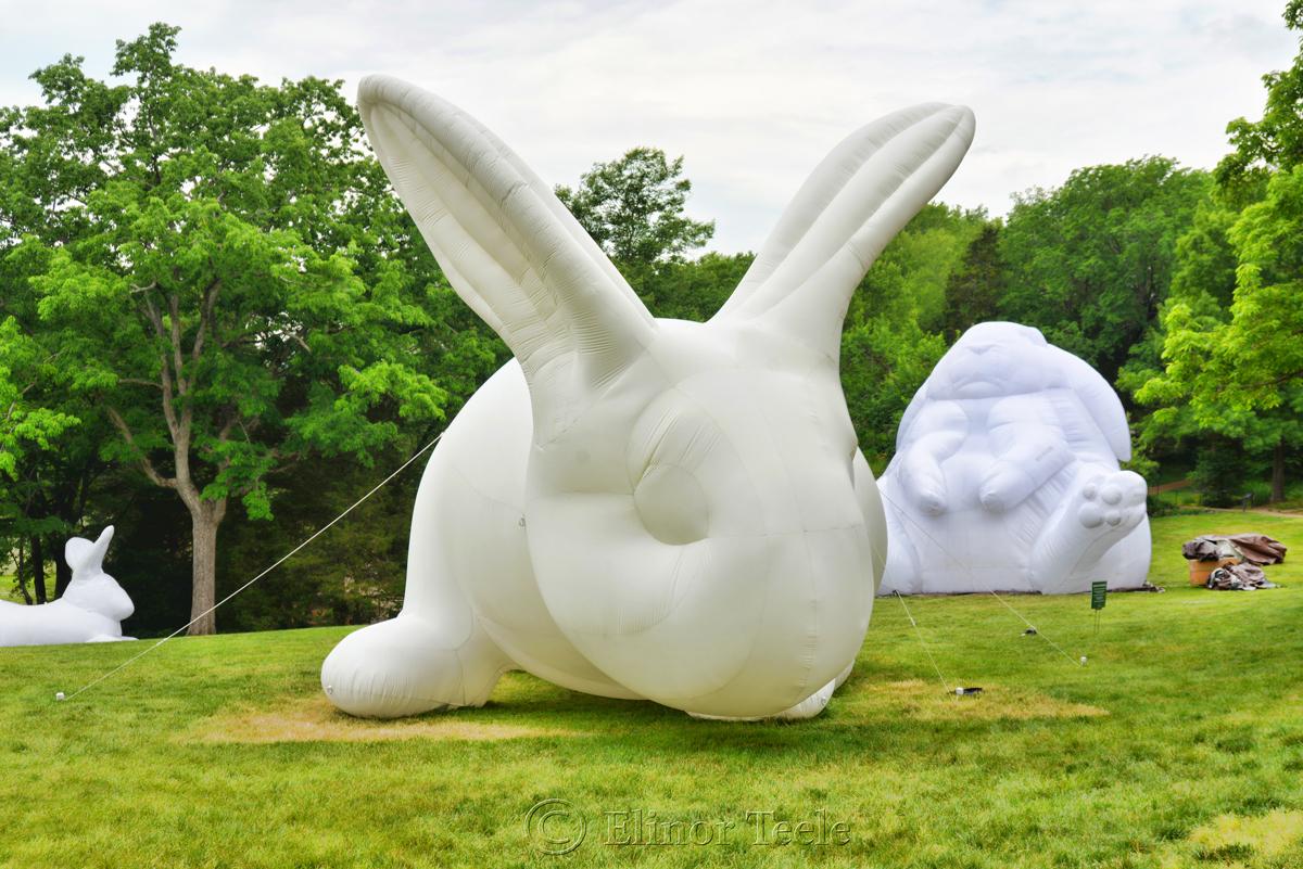 Bunny - Intrude by Amanda Parer, Cheekwood, Nashville 2