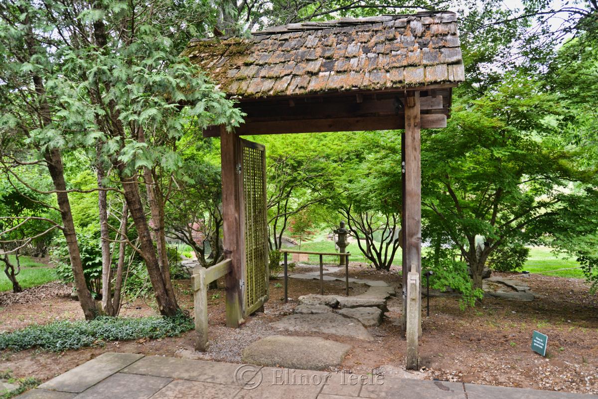 Japanese Gardens, Cheekwood, Nashville