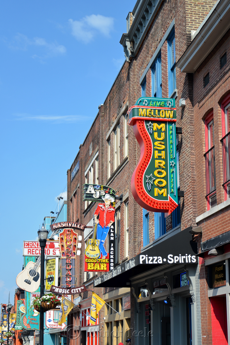 Mellow Mushroom, Broadway, Nashville