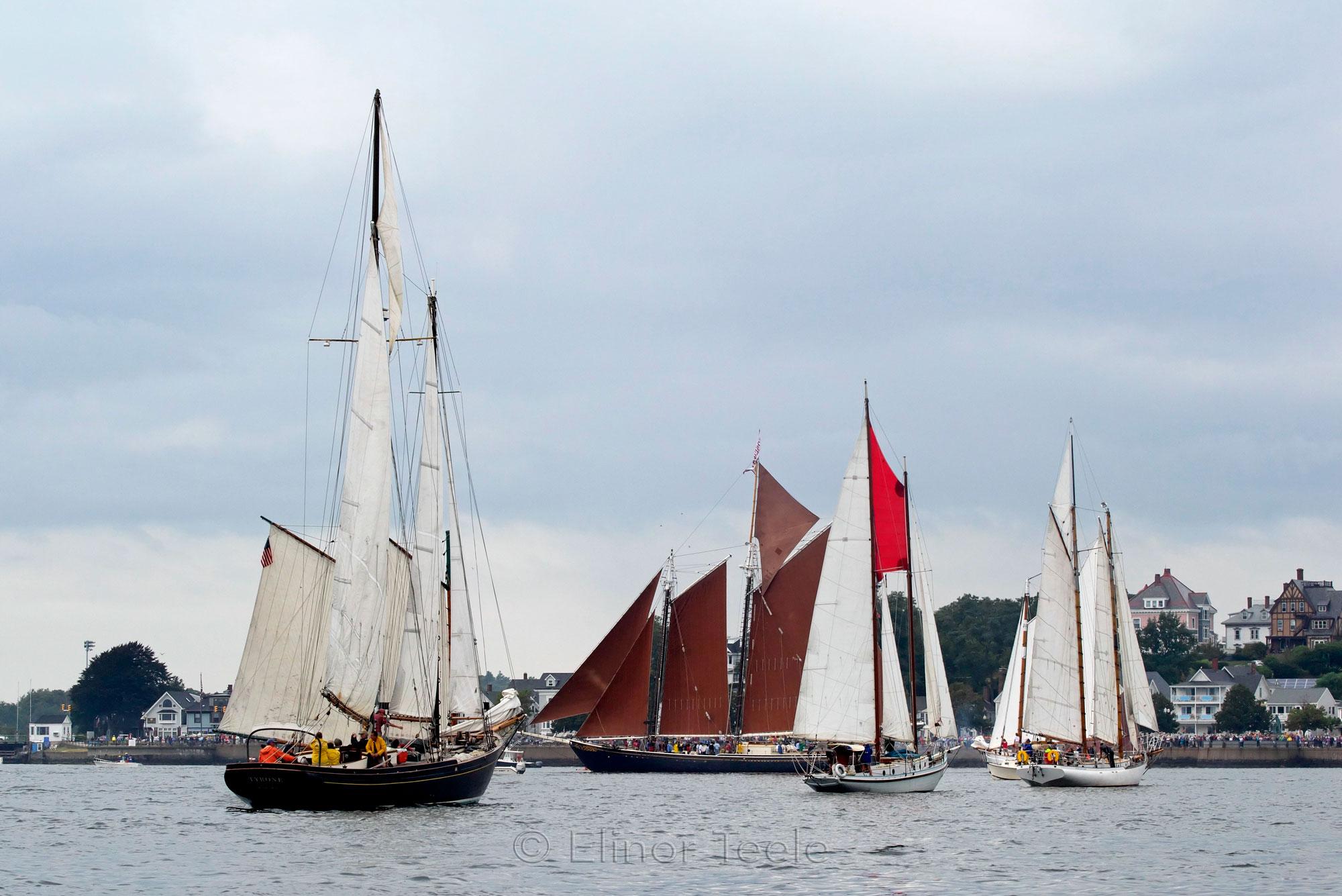 Schooner Festival 2013 Parade of Sail