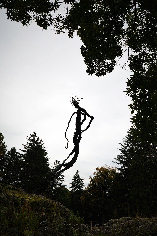 DeCordova Sculpture Park 2