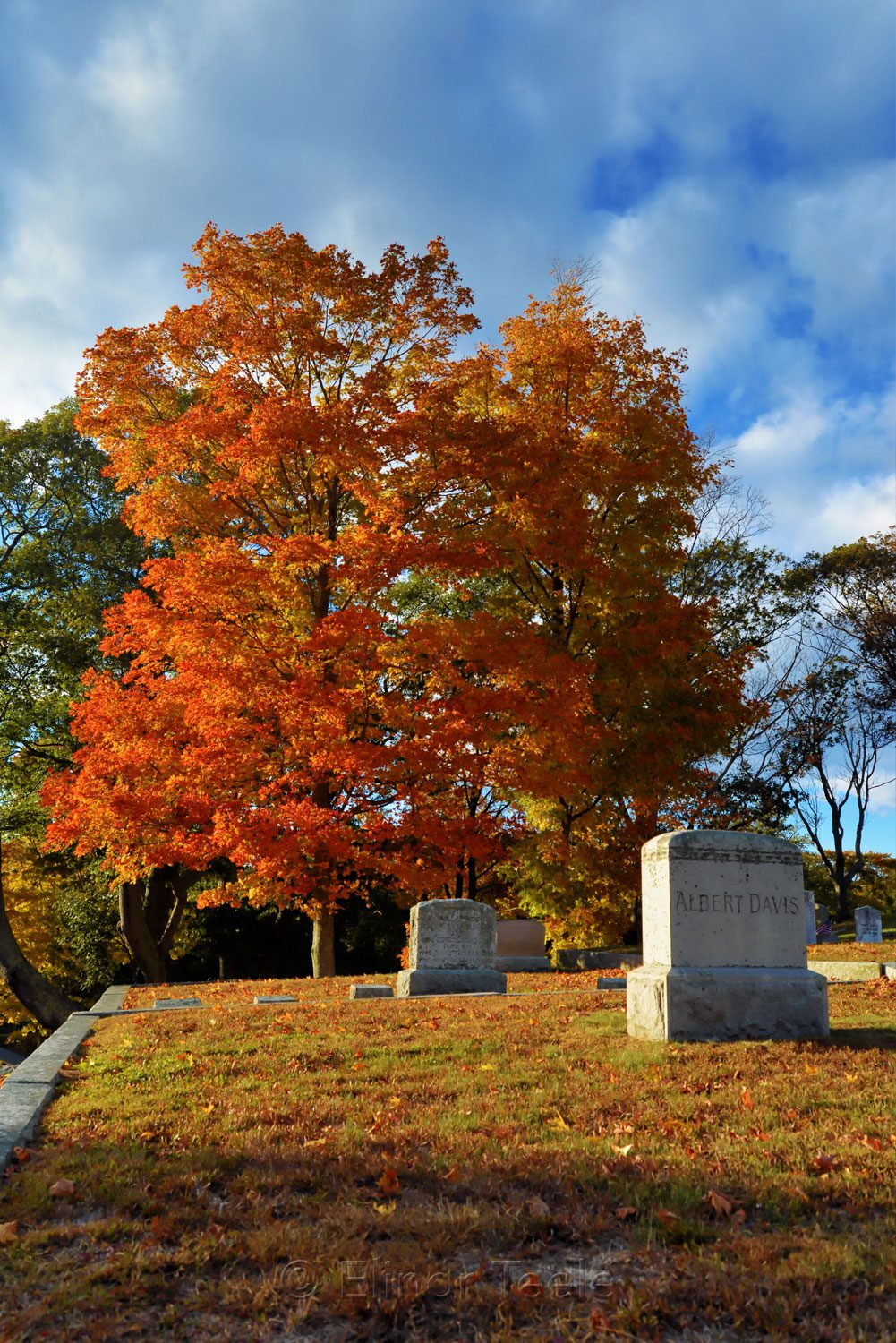 New England Fall Foliage - Cemetery 2
