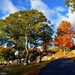 New England Fall Foliage - Cemetery 4