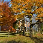 Cogswell's Grant - Fall Foliage, Essex MA 1