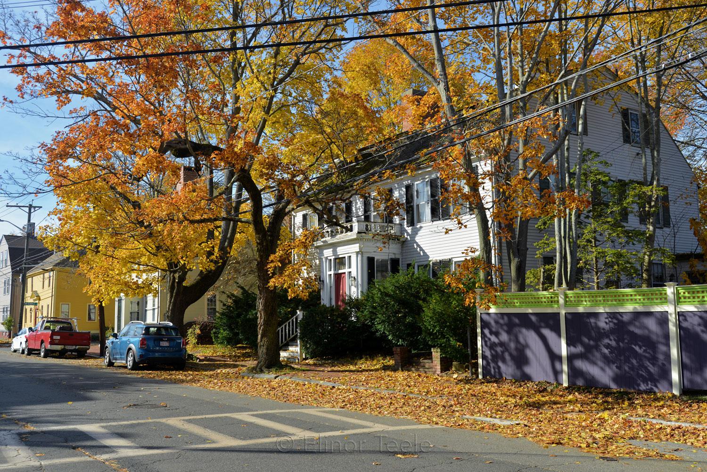 Federal Street, Newburyport MA 1