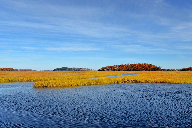 Great Marsh, Essex MA