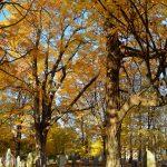 Old Graveyard, Essex MA 2