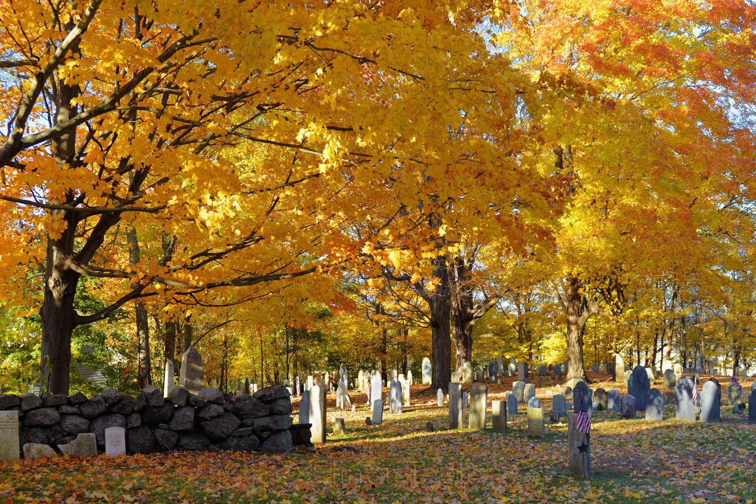 Old Graveyard, Essex MA 3