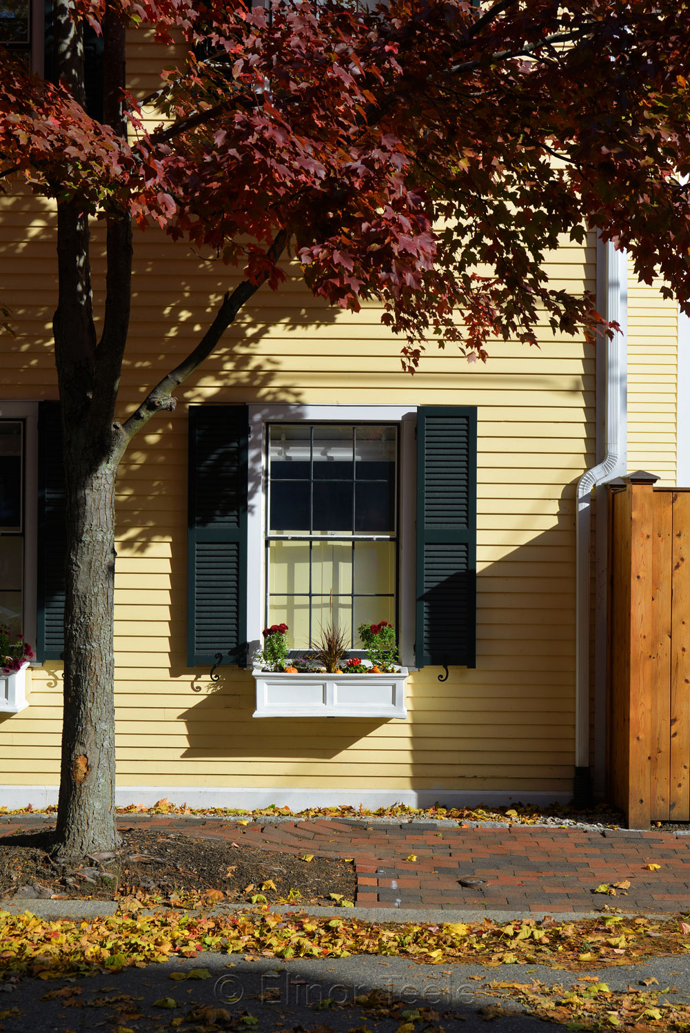 Autumn Window, Newburyport MA