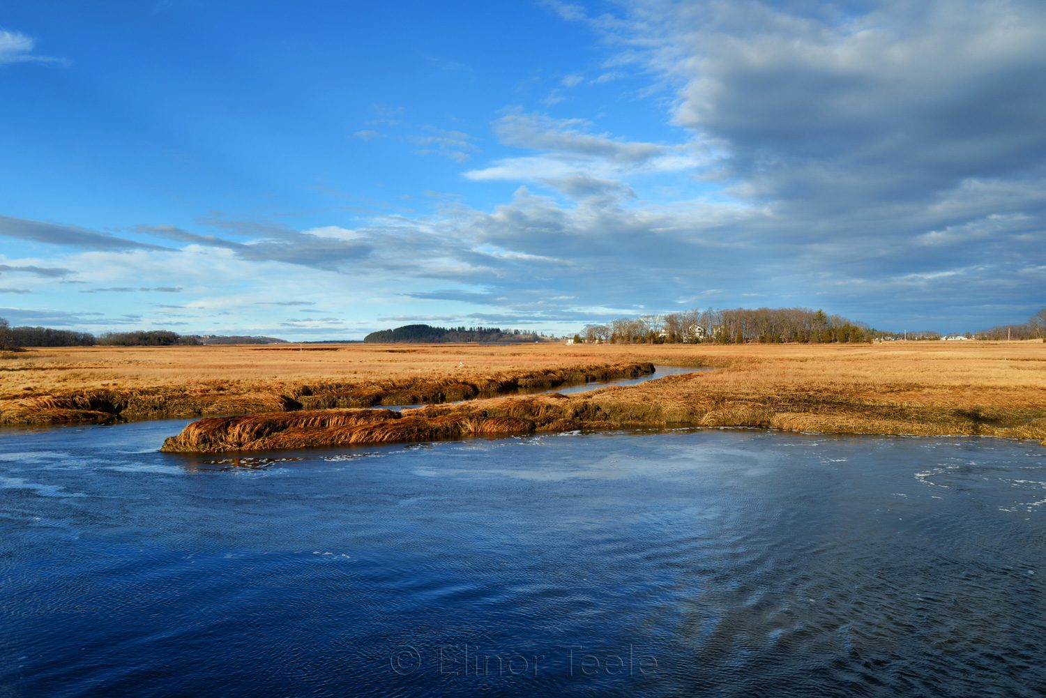 Essex Marshes Under Winter Skies, Essex MA