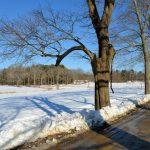 Drive in Winter - Appleton Farms