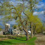 Appleton Farms - Milking Barn & Avenue