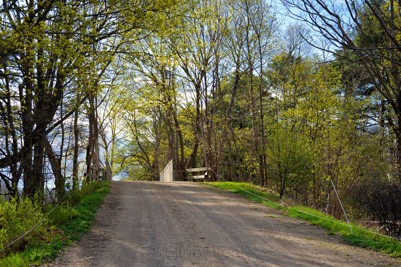Appleton Farms - Railway Overpass