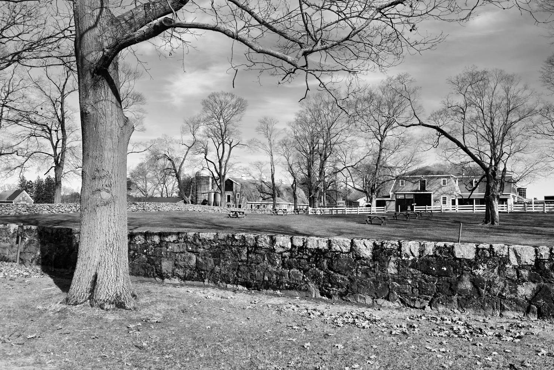 Appleton Farms in April 2019 6