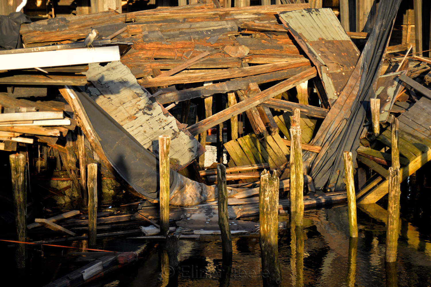 Gloucester Waterfront - Collapsed Warehouse 3
