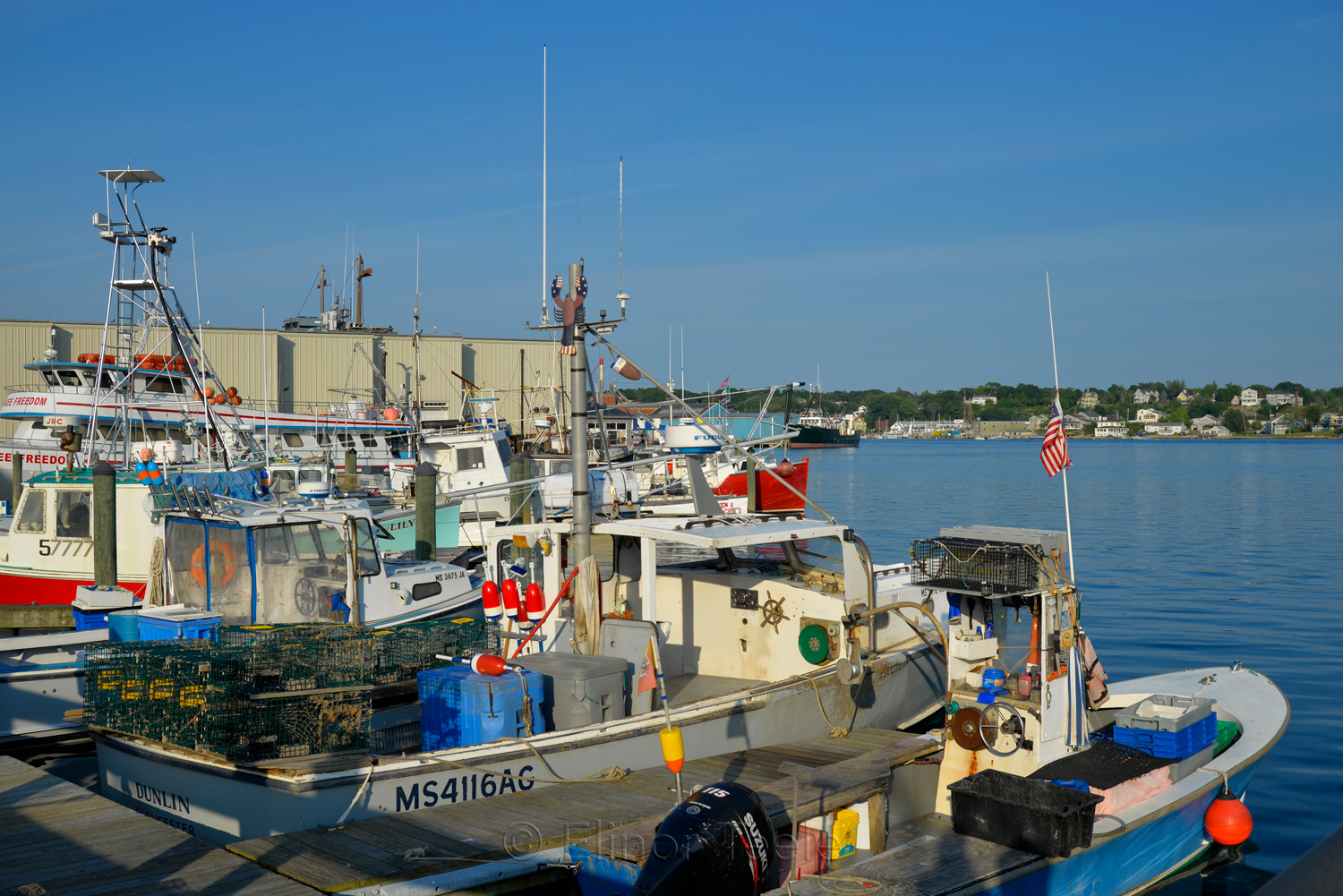 Gloucester Waterfront in July 4