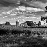 Appleton Farms - Milking Barn BW