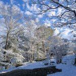 December Frosting 3