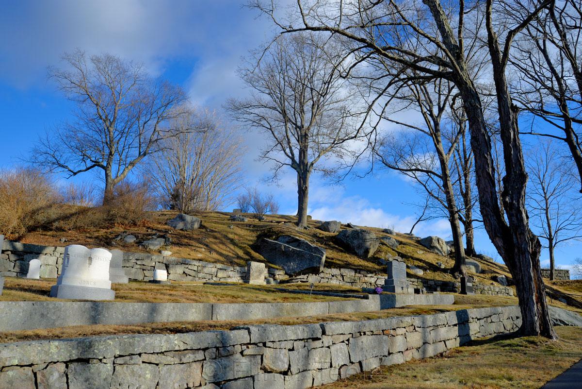 Cemetery - January Sunshine 2