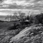 Pasture & Rock - Black & White