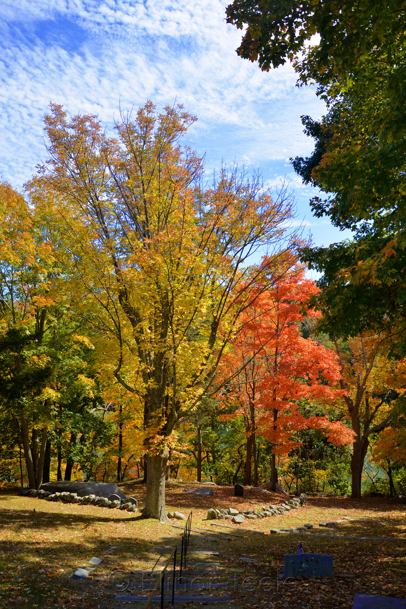 Cemetery - Fall Foliage in October 2