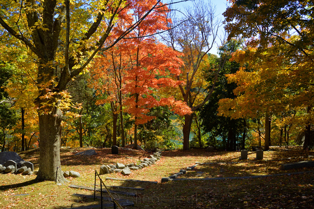 Cemetery - Fall Foliage in October 3