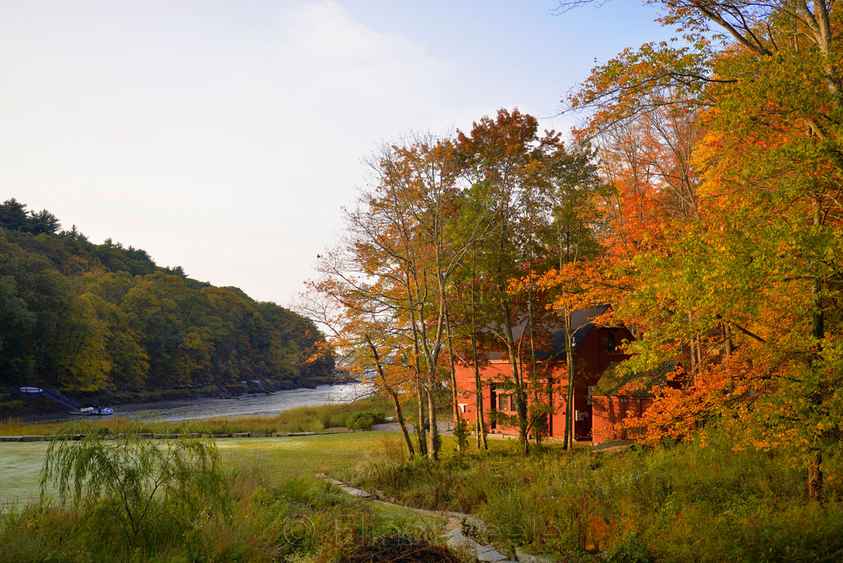 Fall Foliage - Red House 1
