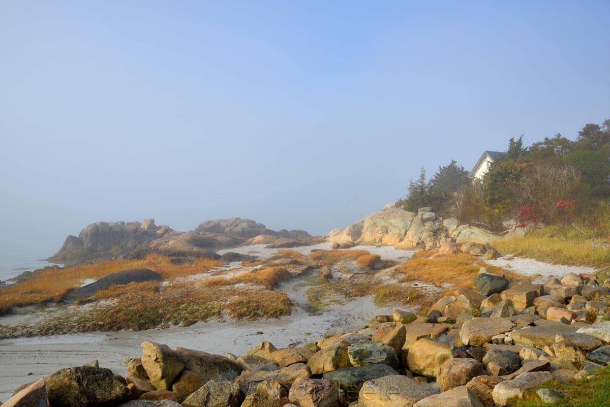 Beach - November Fog 3