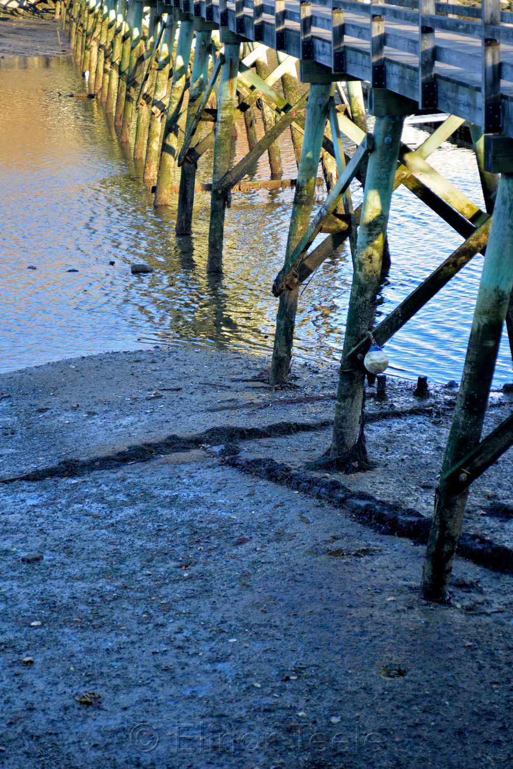 Low Tide at the Bridge - March Light