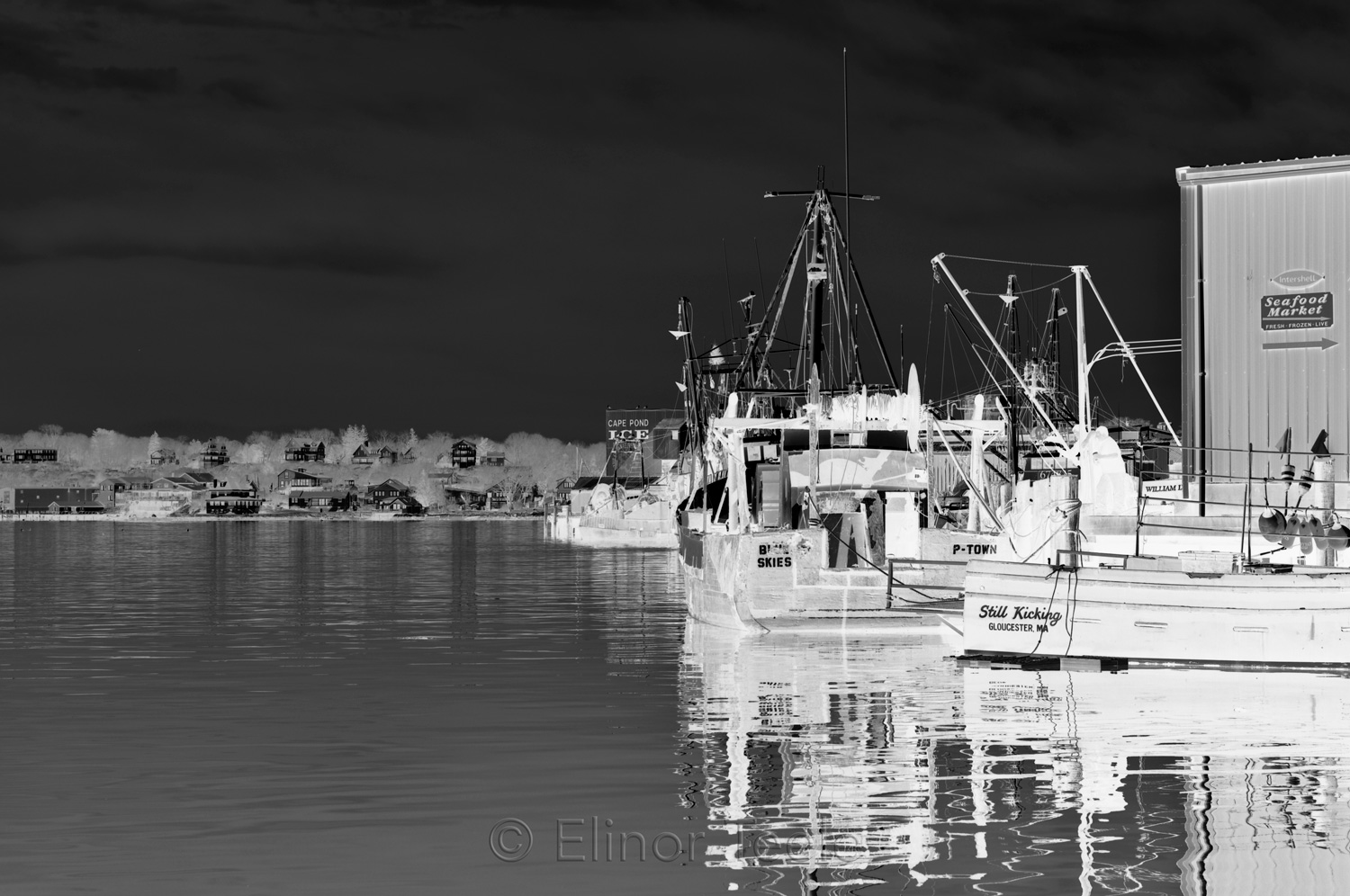 Gloucester Harbor & Cape Pond Ice - Black & White Abstract