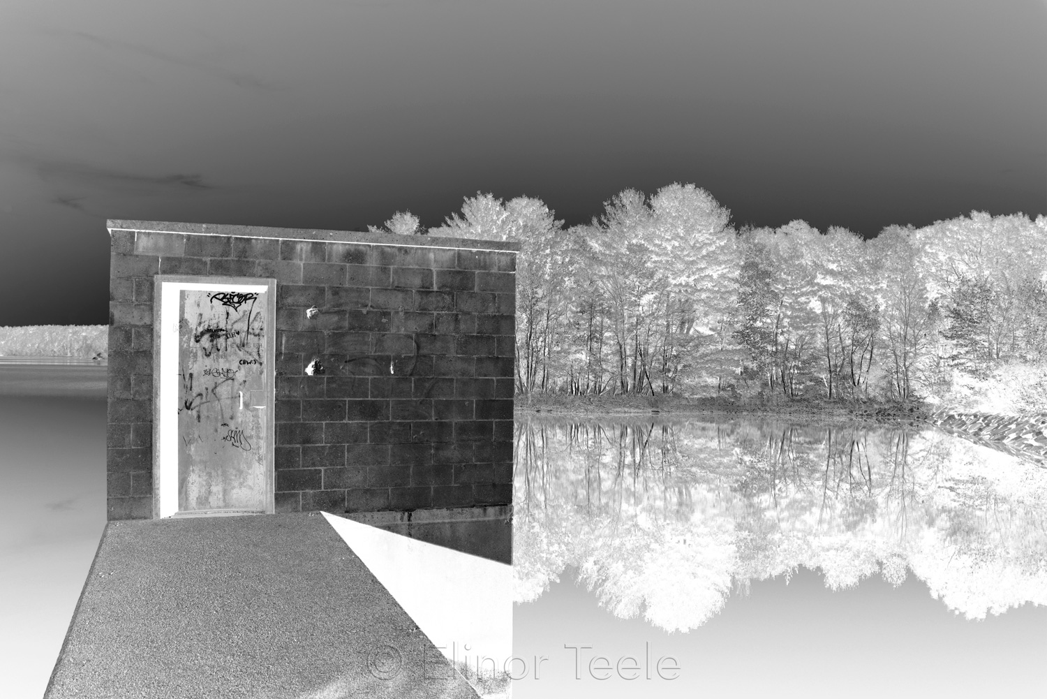 Goose Cove Reservoir - Black & White Abstract