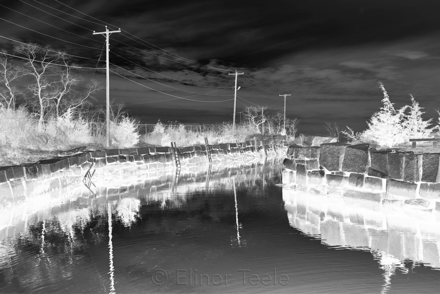 Hodgkins Cove - Black & White Abstract
