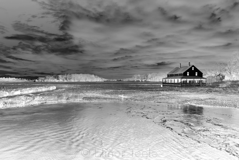 Mabel Burnham House - Black & White Abstract