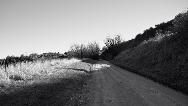Glencoe Road in Black & White - August 3