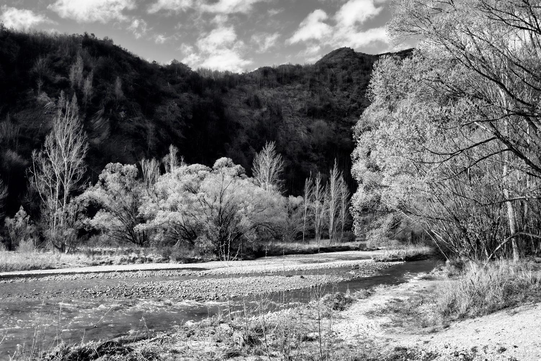 Arrow River - Spring Flowering 3
