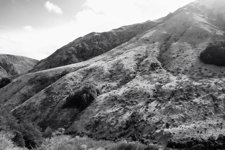 Sawpit Gully - Hills - Black & White